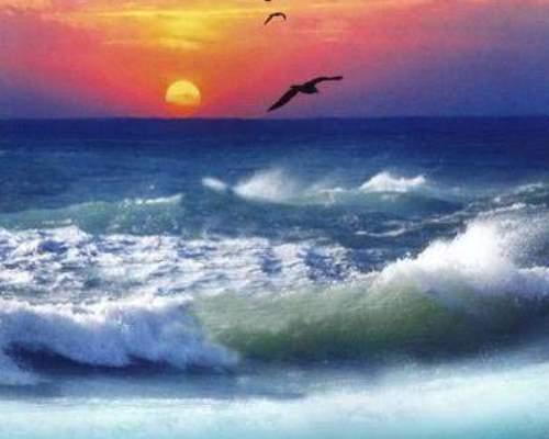 Фотообои глянц. Морская стихия 134*201 (Тула)